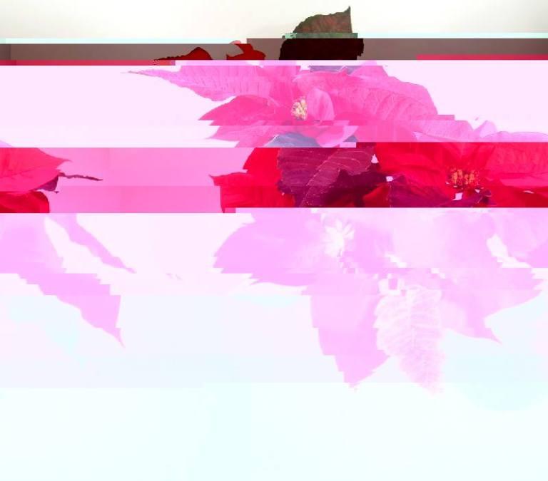 flower_bend